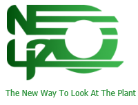 NEO420 – Cannabis & Hemp News